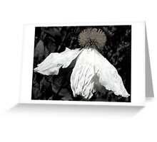 White Skirt Greeting Card