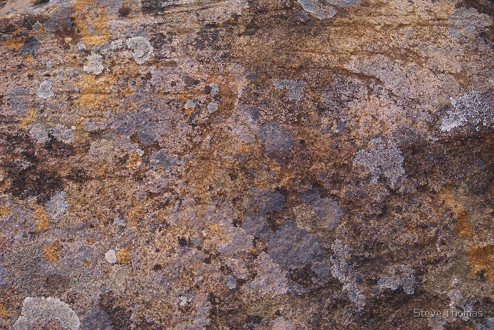 Rock art by Steve Thomas