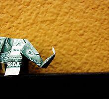 Elephant by Karina Kaiser