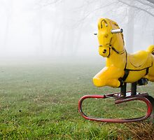 Pony in the Mist by Evan Jones