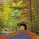 Autumn Bridge by Mike Griffiths