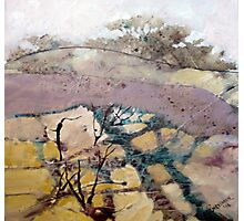 Field and Gorse Photographic Print
