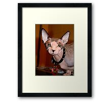For Ken Framed Print