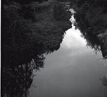 Merri Creek by DaveHarkin