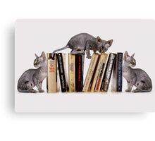 BOOKENDS Canvas Print