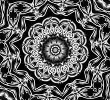 Black Flower by Patricia Johnson