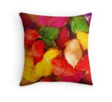 Dyed chicks of Esfahan, Iran. Throw Pillow