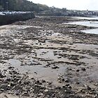 South Queensferry beach, Scotland by christinawalker