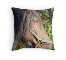 Noble Shire Throw Pillow
