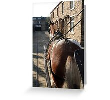 Horse at Work Greeting Card