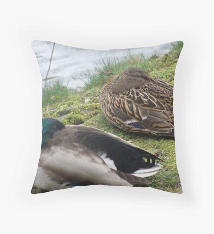 Ducks sleeping Throw Pillow