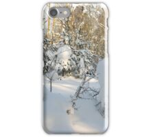 AFTER SNOW-STORM. iPhone Case/Skin