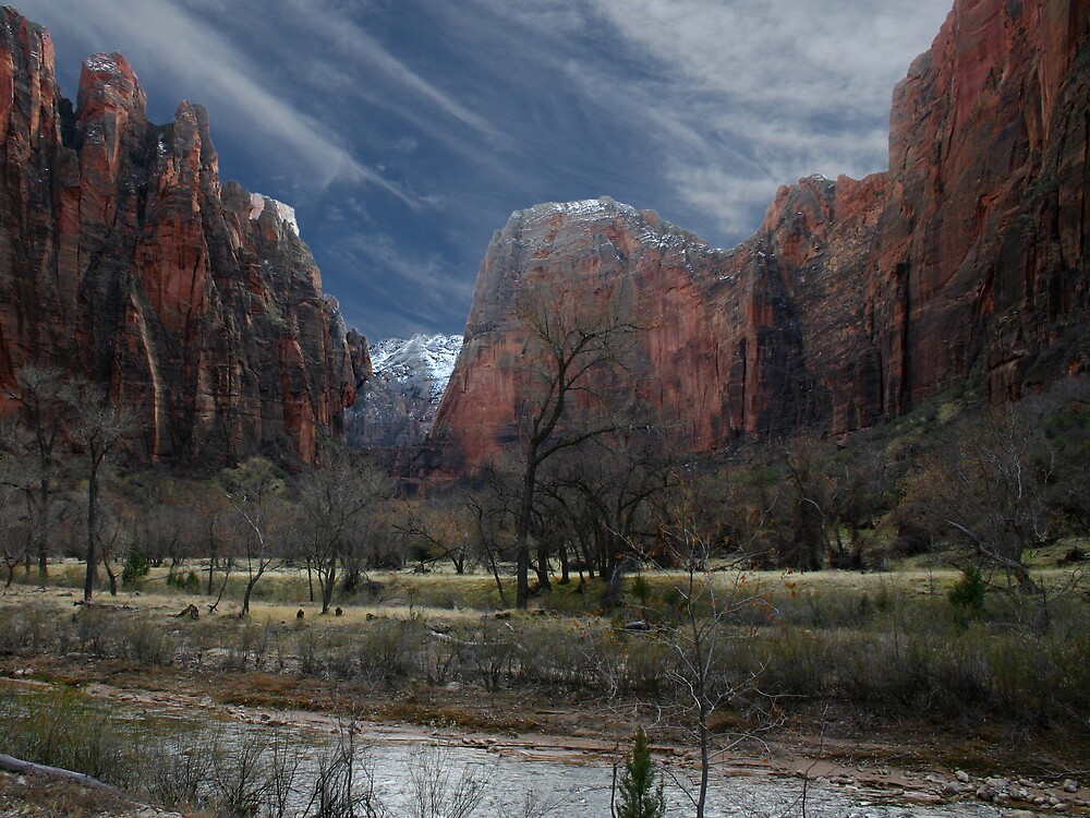 Zion National Park by Patricia Montgomery