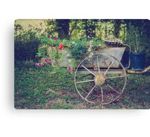 Flower Cart France Canvas Print