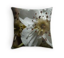 Pear Blossoms 01 Throw Pillow
