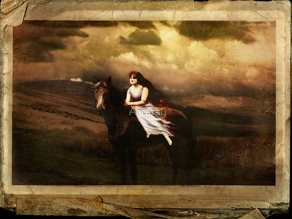 Wild Horses  by Artway