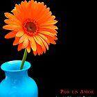 Por un Amor by James Edward Olson
