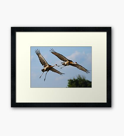 Lovers in the air Framed Print