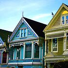 Painted Ladies by Ray4cam