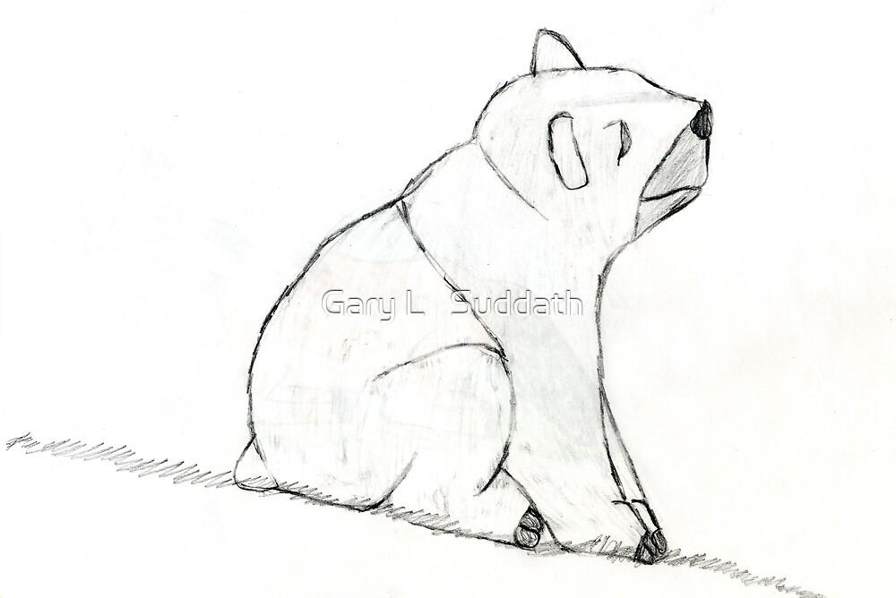 Bear On A Hill by Gary L   Suddath