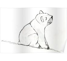 Bear On A Hill Poster