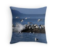 Black Faced Cormorants on Frederick Henry Bay Throw Pillow