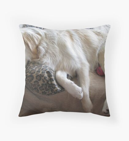 Exhausted Throw Pillow