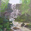 Russell Falls Tasmania by Shauna  Noble
