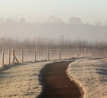 Frosty Path by Ashley Beolens