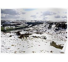 Farndale in Winter Poster