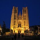 St.Michael Cathedral, Brussels, Belgium by Elena Skvortsova