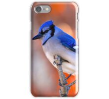 Colorful Winter iPhone Case/Skin