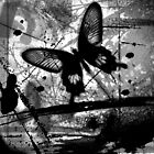 Black Butterfly by Wayne Leon Learmond