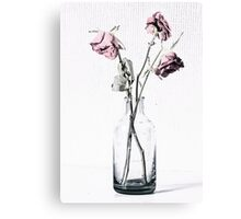 Three frazzled roses and a glass bottle Canvas Print