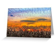 Indiana Sundown Greeting Card