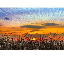 Indiana Sundown Photographic Print