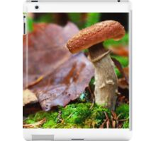 autumn beauty iPad Case/Skin