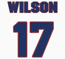 National baseball player Wilson Delgado jersey 17 by imsport