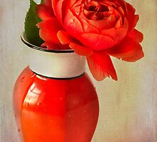 Rose  in Chinese Vase by inkedsandra