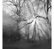 Misty, moiesty morning - photography Photographic Print