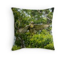 young red- tail Throw Pillow