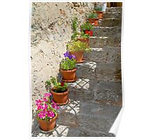 Flower pots on stone steps Poster