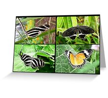 Fractal Flutterby Foursome Greeting Card