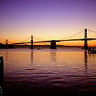 San Franisco  •  Oakland Bay Bridge by Richard  Leon