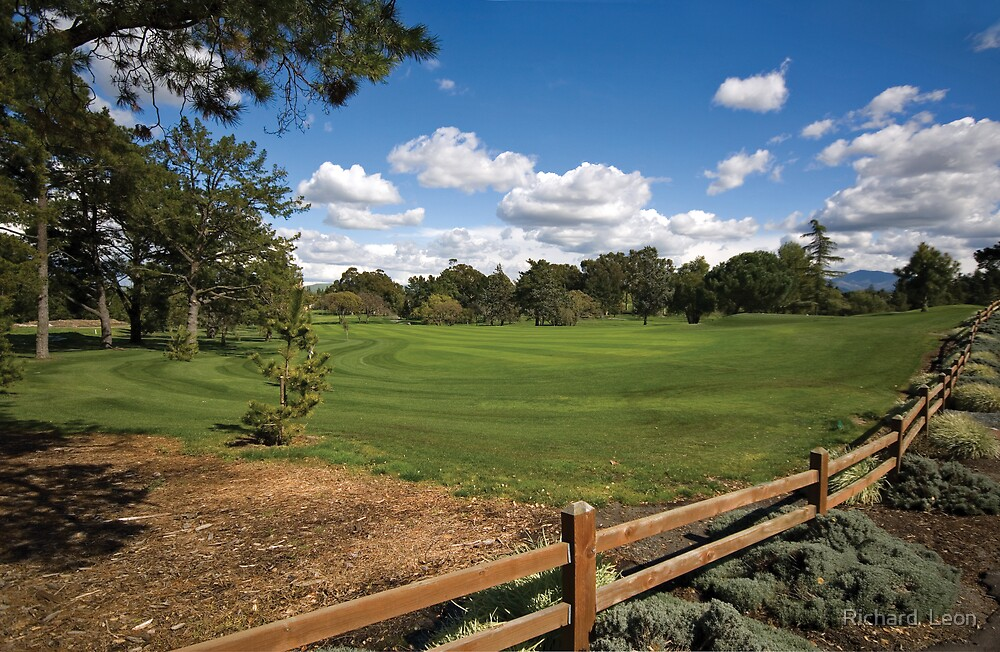 Urban Greens  •  Contra Costa Country Club by Richard  Leon