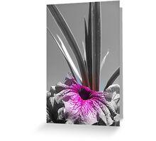 Pwetty Flower focal B & W Greeting Card