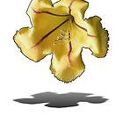 Chalice Vine Flower by AlldogsDesigns