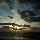Light Over Akko Beach by Nira Dabush