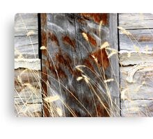 Little Brushes Canvas Print