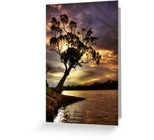 River Redgum Sunset Greeting Card